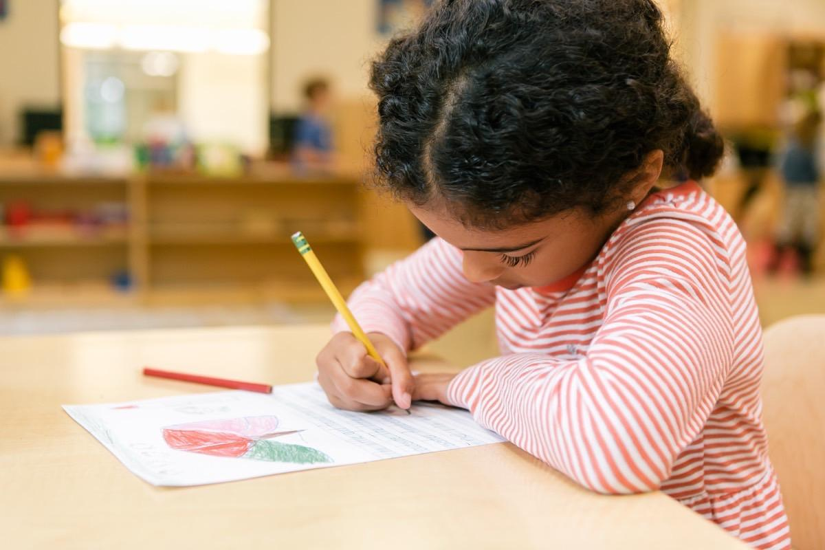 Independent Learners at Quest Montessori School in RI