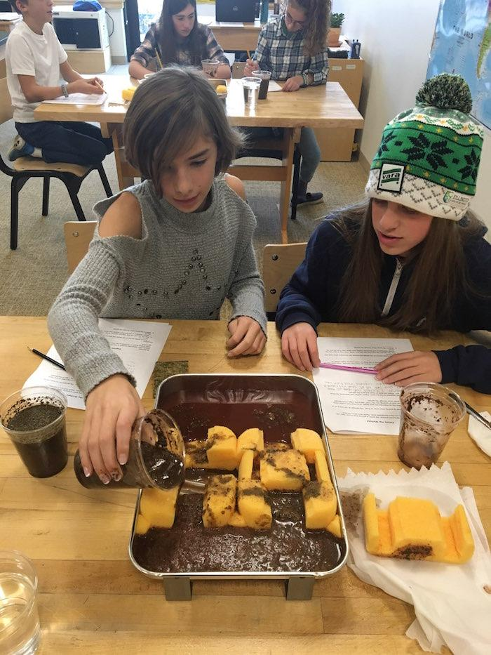 Middle School Student Newsletter, 11/30/18 1
