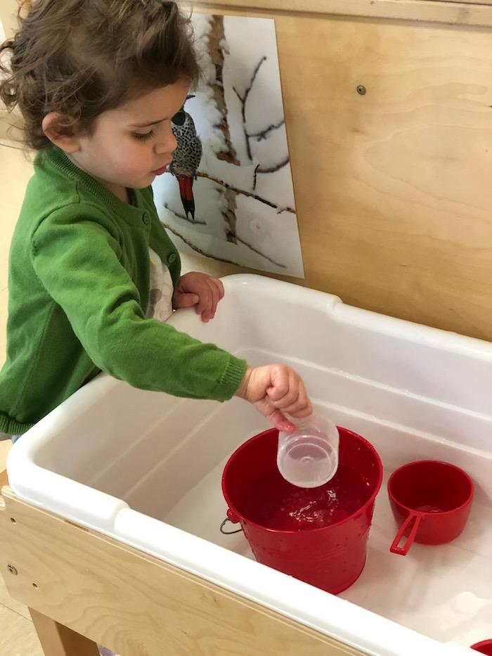 Water and the Montessori Toddler 4