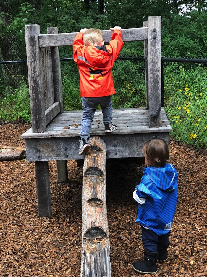 The Importance of Outdoor Play for Toddlers 4