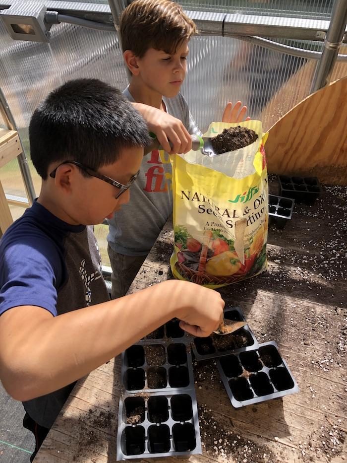 Greenhouse Work