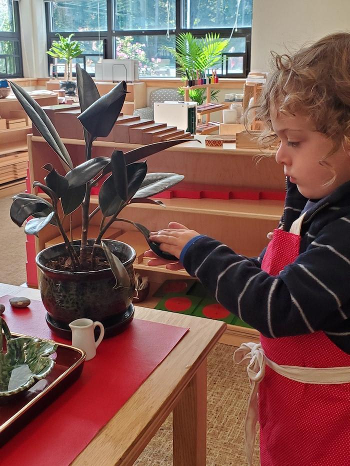 The Quest Montessori Day: Primary 16