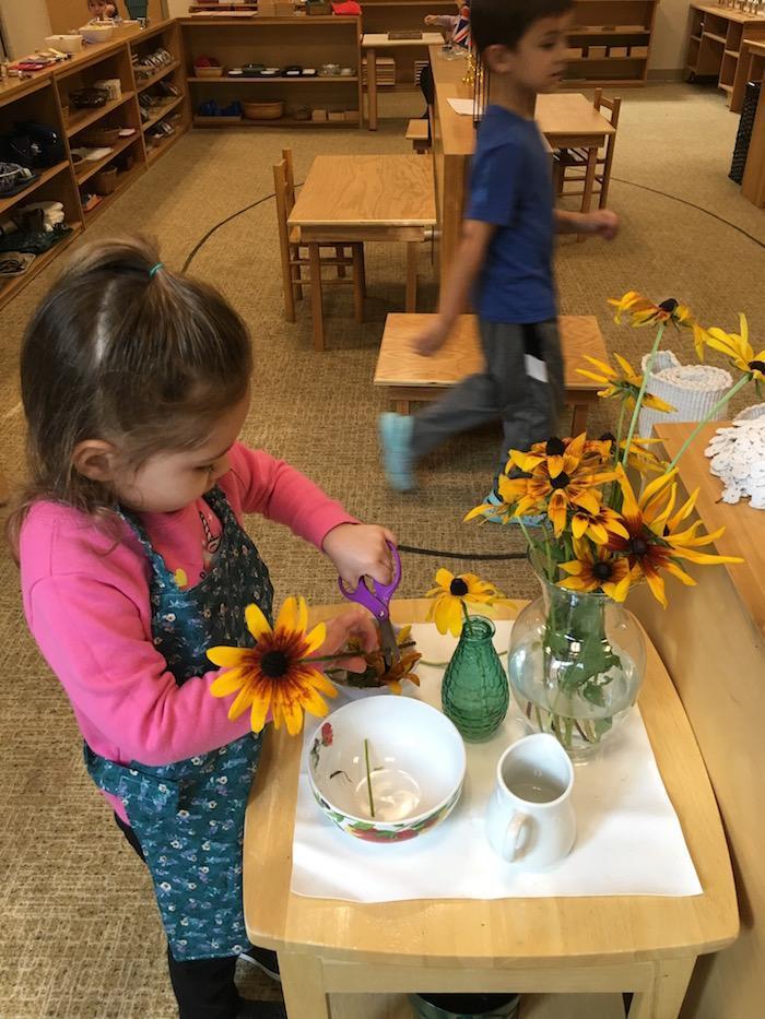 The Quest Montessori Day: Primary 9