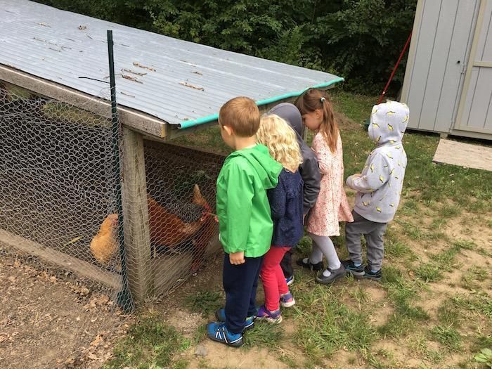 The Quest Montessori Day: Primary 29