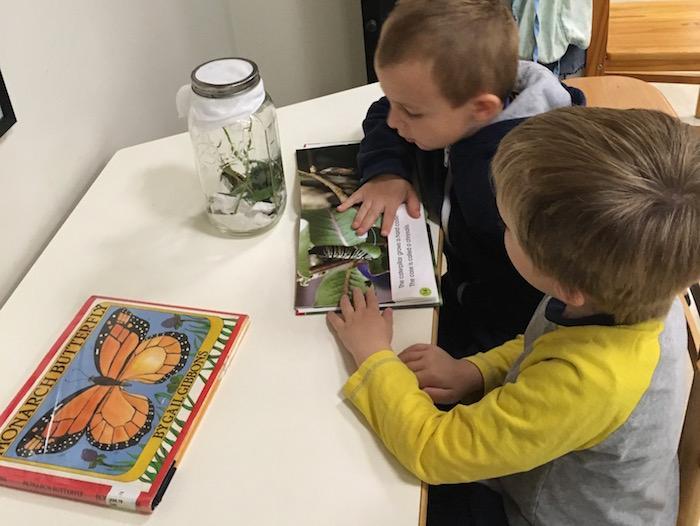The Quest Montessori Day: Primary 35
