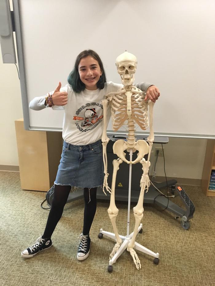 Classroom Skeleton