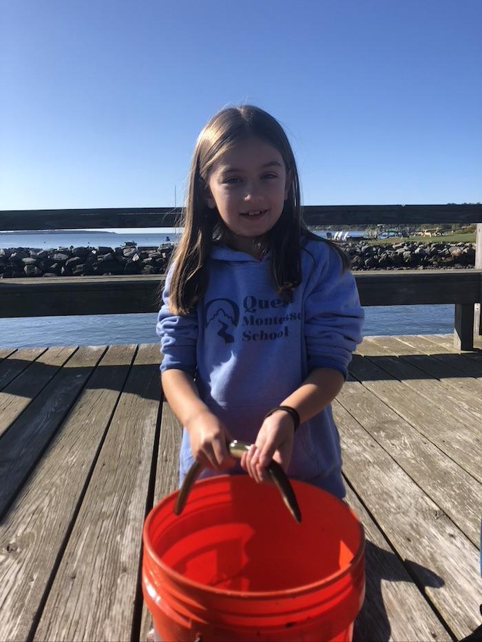 Narragansett Bay Study 4