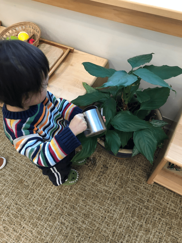 """The """"Practical Life"""" of the Montessori Toddler 5"""