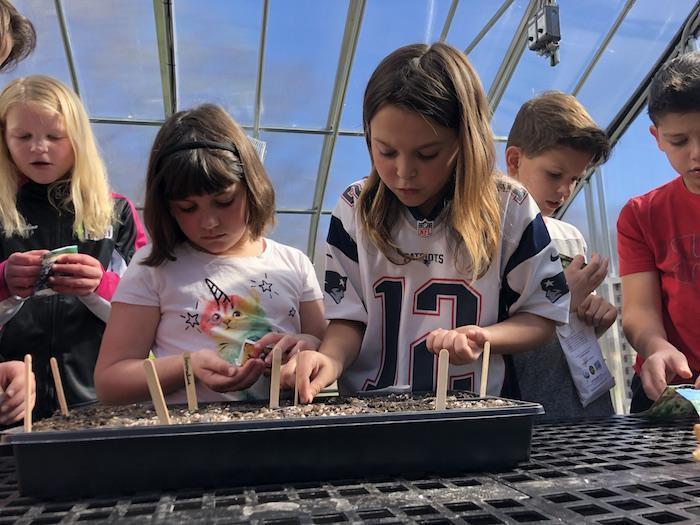 What Makes a Great Montessori School? 2