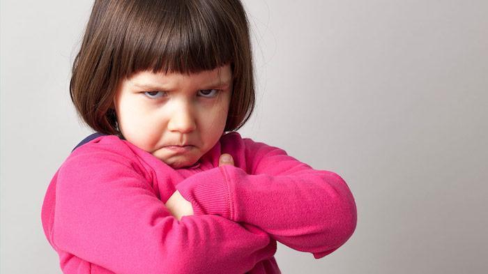 Navigating Your Child's Challenging Behaviors 1