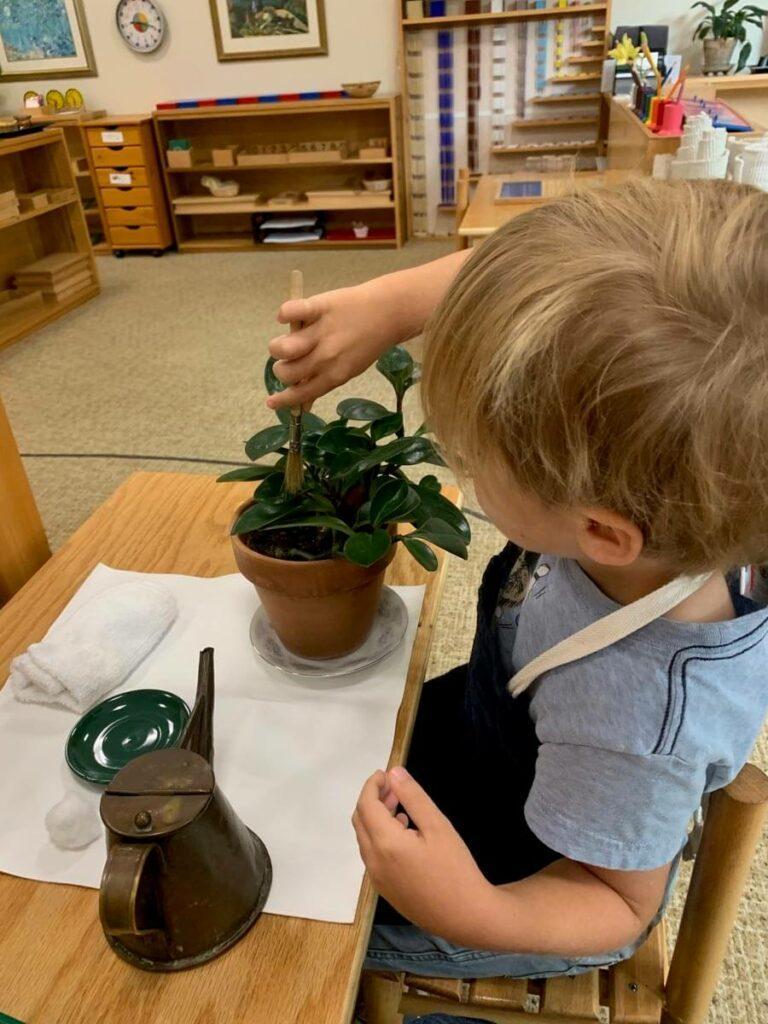 Plant work Private-School-RI-Montessori