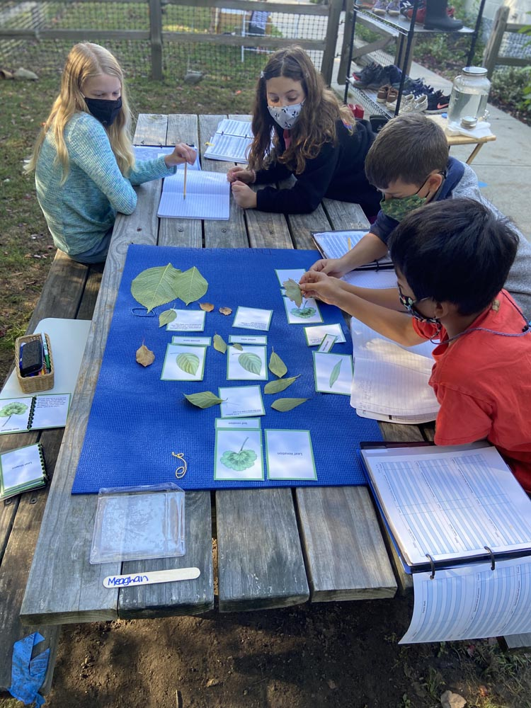 Learning In Person in the Upper Elementary Classroom